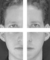 بازشناسی چهره انسان به کمک روش های پردازش تصویر8